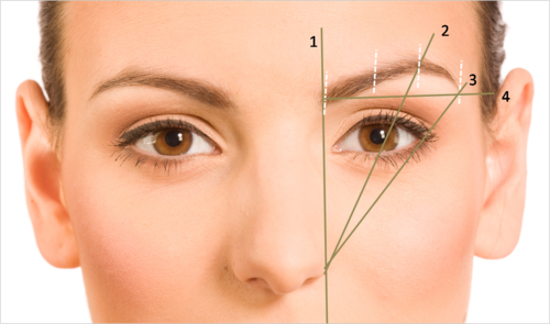 How To Shape Your Eyebrows - The Best Shape to Flatter ...