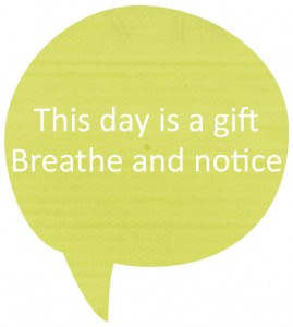breathe and notice