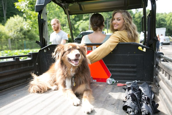 amanda-seyfried-nov16-dog-truck